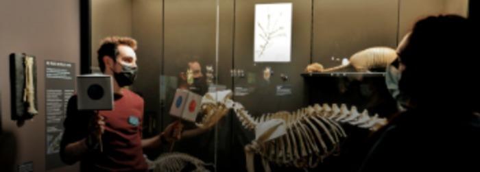 Envie d'échanger avec un des médiateurs scientifiques du muséum ? Partez pour 20 minutes de découvertes autour de l'évolution, de la vie en ville ou des coulisses du muséum !