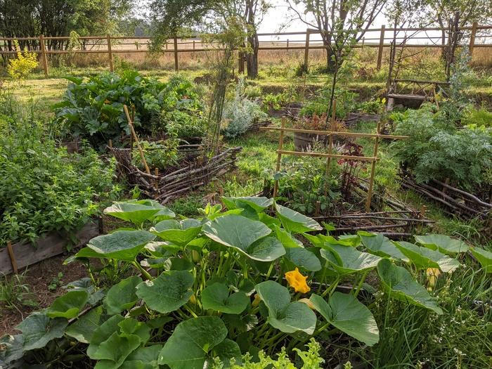 Journées du patrimoine 2020 - Visite du nouveau potager-mandala en permaculture