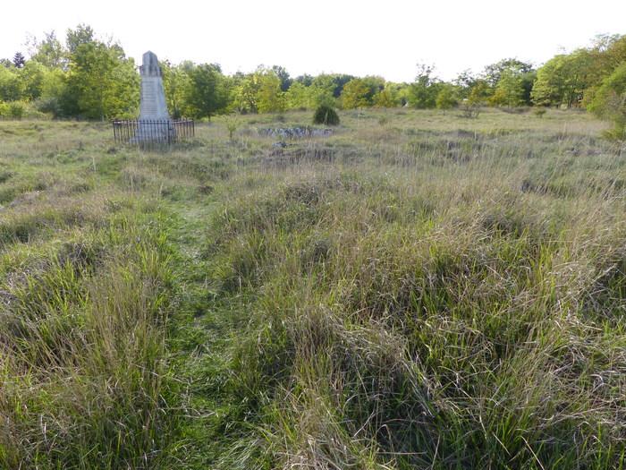 Journées du patrimoine 2020 - La pelouse de Vau a besoin de vous !