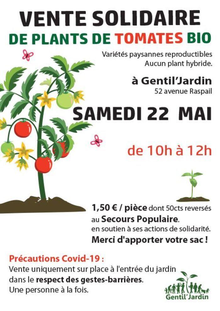 Vente Solidaire de plants de tomates Bio