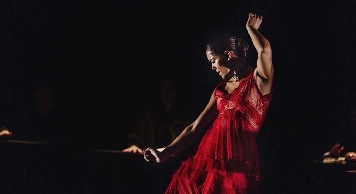 """L'association """"Flamenco pour tous"""" propose un spectacle intimiste a l'impasse Jean de la Fontaine"""