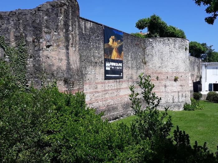 Journées du patrimoine 2019 - Découverte d'une enceinte gallo-romaine