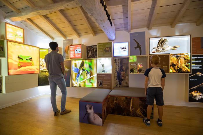 Journées du patrimoine 2019 - Accès gratuit au Centre de découverte : exposition dynamique sur les migrations animales insolites !