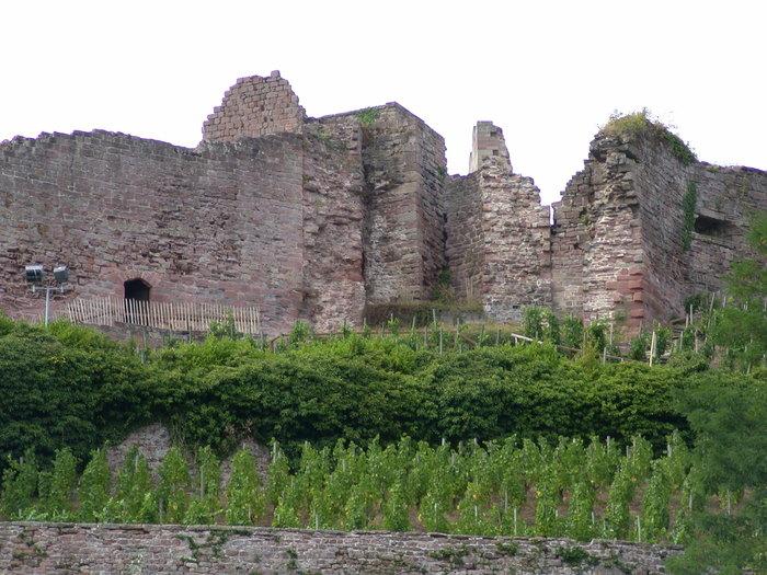 Journées du patrimoine 2020 - Visite guidée du château d'Epinal