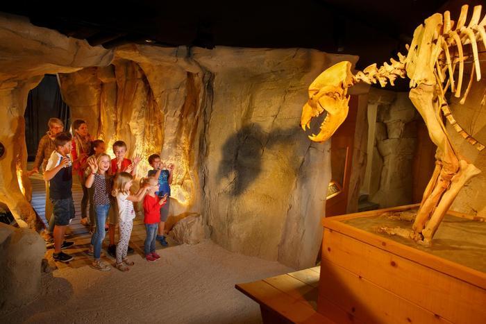 Journées du patrimoine 2020 - Visite guidée du Musée de l'ours des cavernes