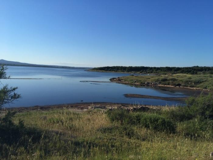 Journées du patrimoine 2020 - Balade découverte des berges de l'étang et sensibilisation