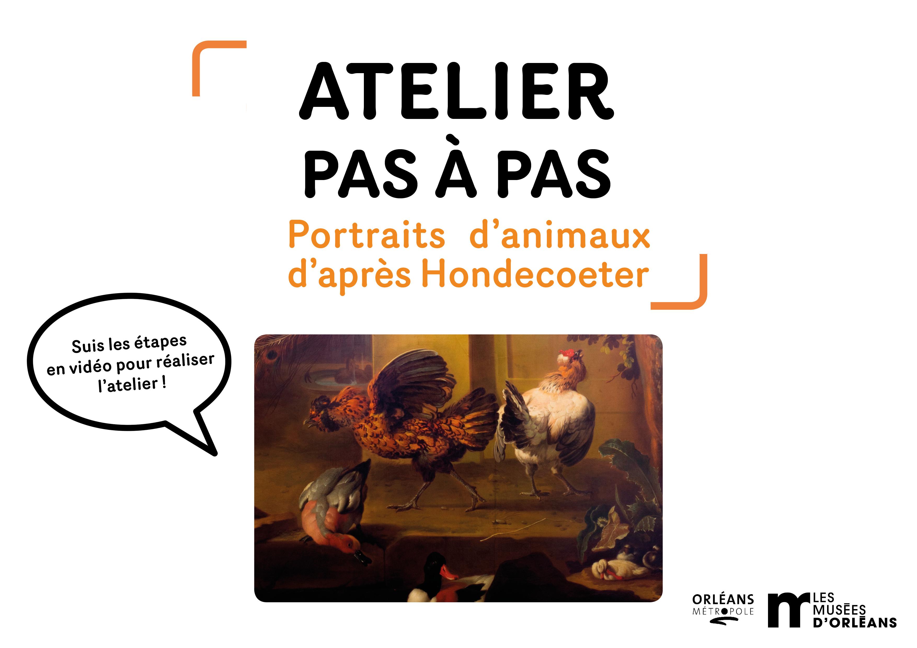 ATELIER PAS À PAS / Portraits d'animaux