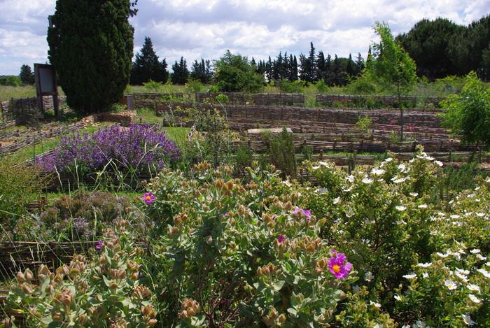 Journées du patrimoine 2020 - Balade guidée dans le parc