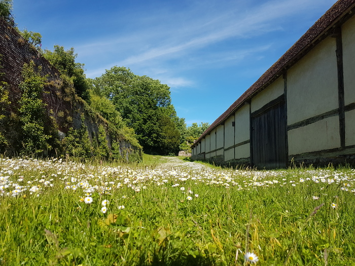 Journées du patrimoine 2020 - Visite des jardins de l'Abbaye de Saint-Riquier