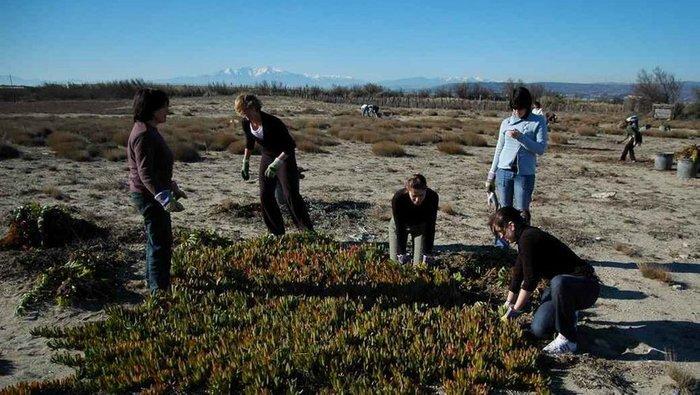Journées du patrimoine 2020 - Chantier de réhabilitation des dunes