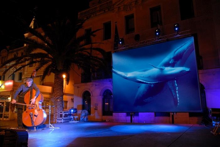 Journées du patrimoine 2019 - « Baleines et contrebasse »                                           Rivière d'Abord en lumière 2019