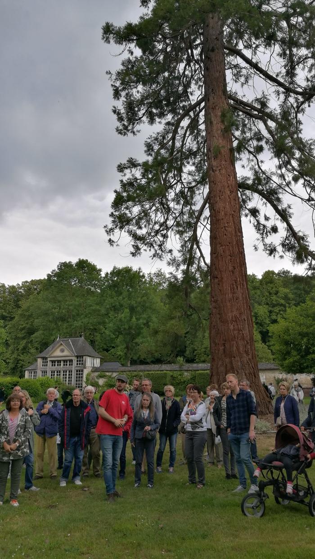 Visite guidée du parc et des jardins du château du Taillis