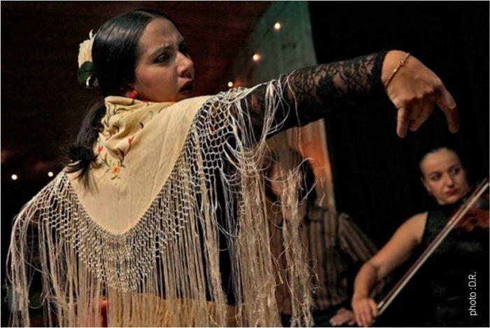 10ème édition organisé par l'association Flamenco pour tous