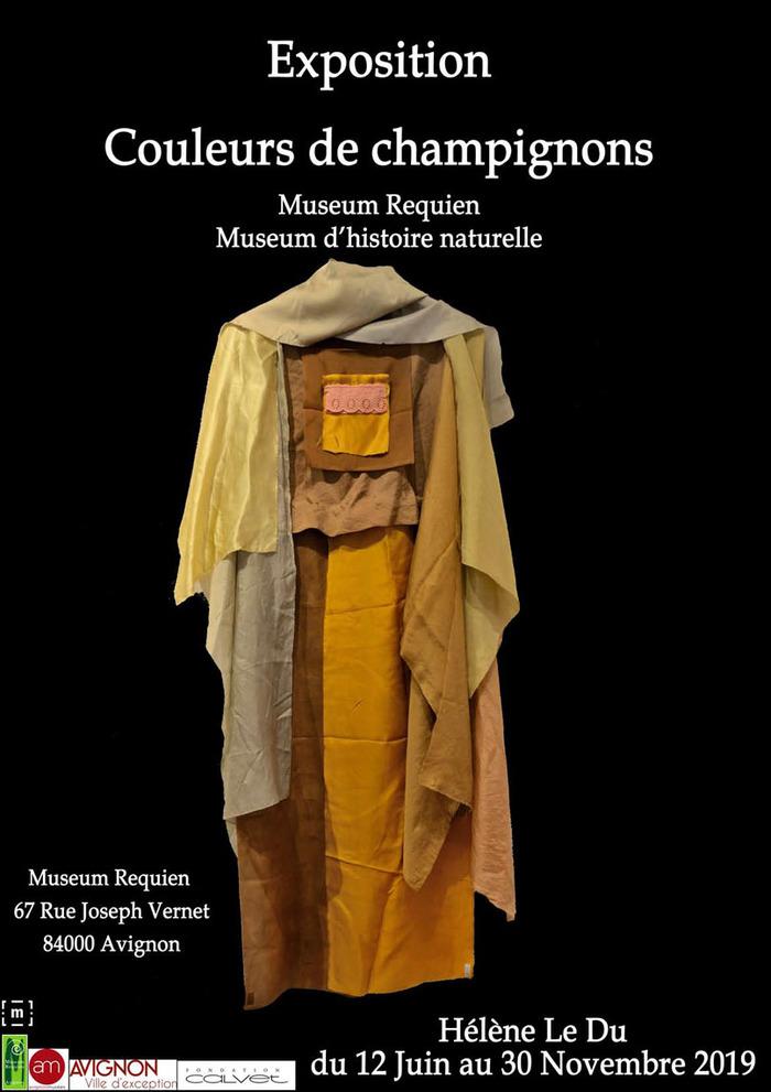 Journées du patrimoine 2019 - visite libre des collections permanentes et de l'exposition Couleurs de champignons
