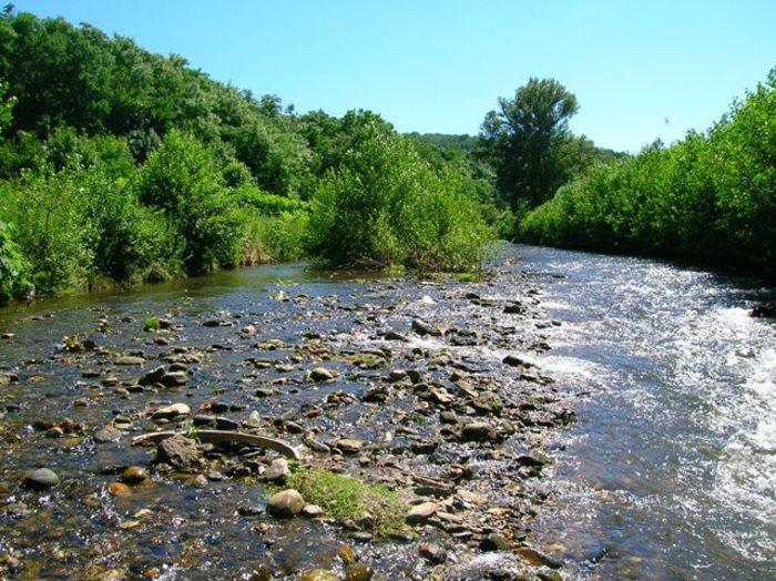 Journées du patrimoine 2019 - Une ville au fil de l'eau « Dans la vallée coule une rivière »