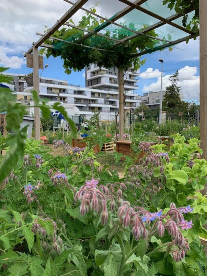 Visite libre du jardin