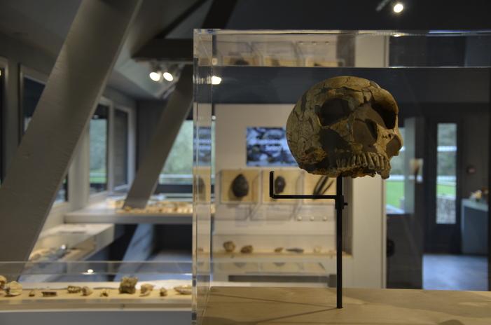 Journées du patrimoine 2019 - Visite libre du musée de Préhistoire