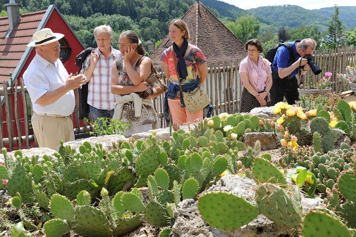 Bizarre Bedornung und prächtige Blüten: der Kakteengarten in Horb am Neckar
