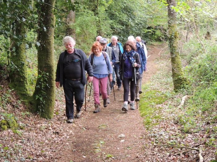 Promenade en breton suivie d'un pique-nique