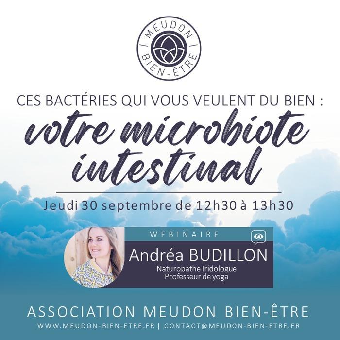Avec Andréa BUDILLON - Naturopathe Iridologue et Yogathérapeute à Chaville et Meudon (92)