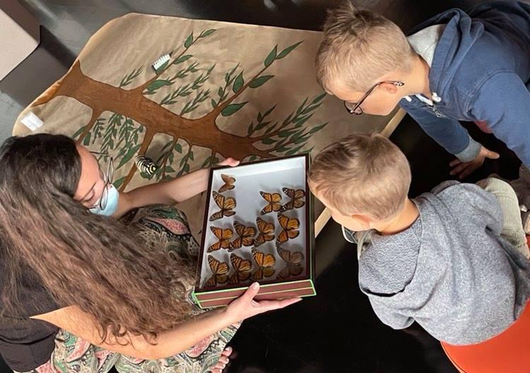 ATELIERS COBAYES / L'odyssée du papillon monarque (0-3 ans)