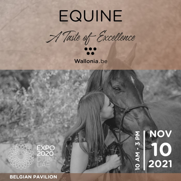 We invite you to an exclusive EQUINE Masterclass followed by a networking gourmet lunch. Why do horses thrive in Wallonia?