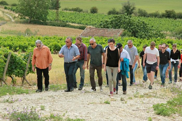 Journées du patrimoine 2019 - Balade commentée dans le vignoble ardéchois
