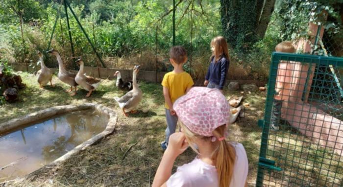 Une colo idéale pour les plus petits : soin aux animaux de la ferme, atelier pain, poterie, laine, poney. Fabrication de marionnettes, visite, veillées, boum et anniversaires !
