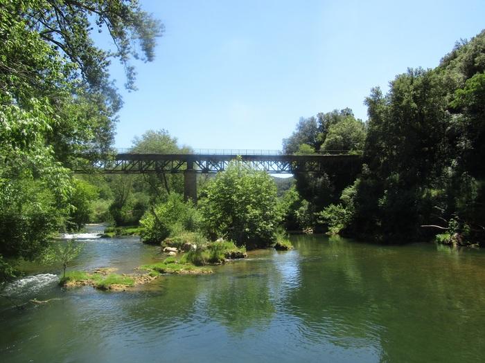 Journées du patrimoine 2019 - Balade contée dans la forêt communale des Arcs