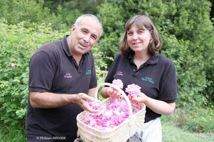 Journées du patrimoine 2020 - Découverte des plantes à parfum du Pays de Grasse et de leur transformation en confiserie