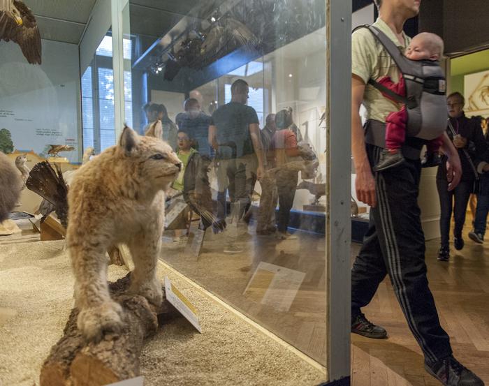 Journées du patrimoine 2019 - Visite libre du Musée Zoologique