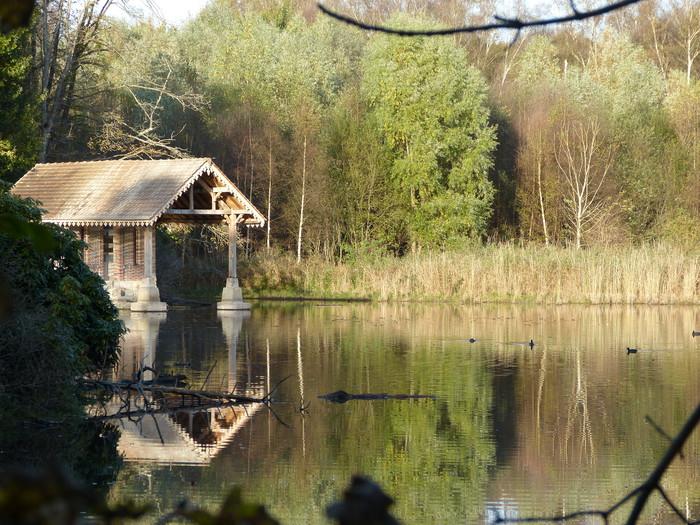 Journées du patrimoine 2020 - La réserve naturelle des étangs de Bonnelles, entre patrimoine historique et naturel