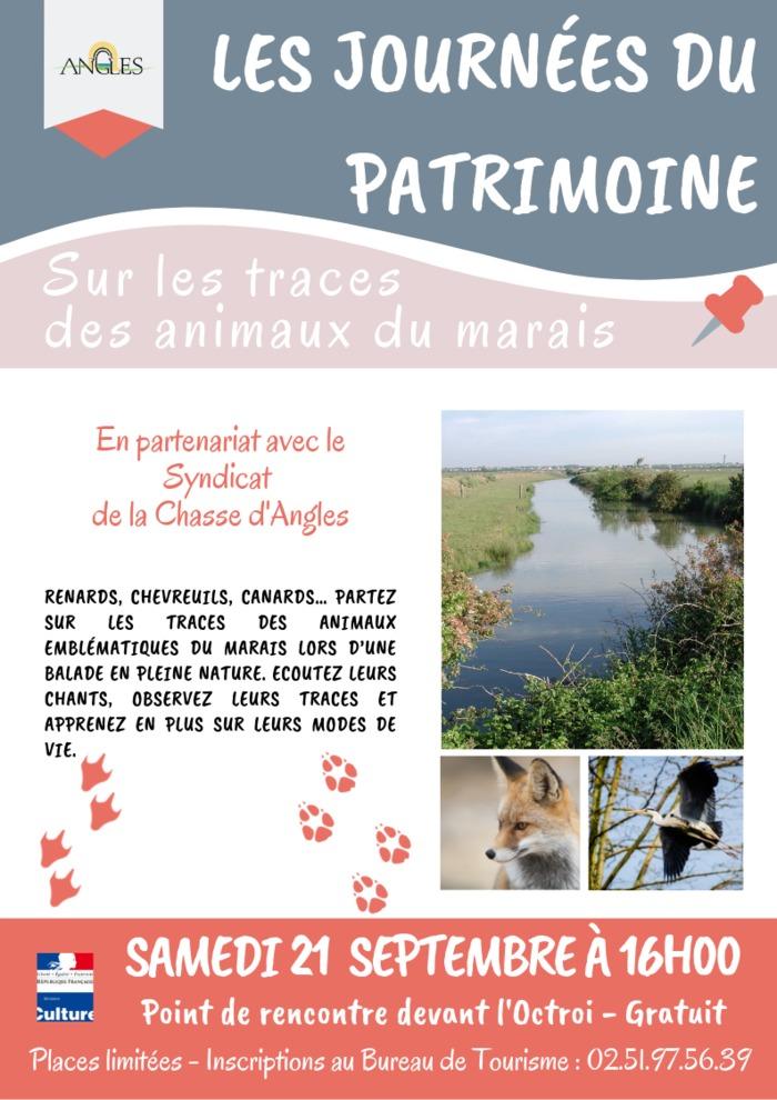 Journées du patrimoine 2019 - Balade à l'Octroi « Sur les traces des animaux du marais »