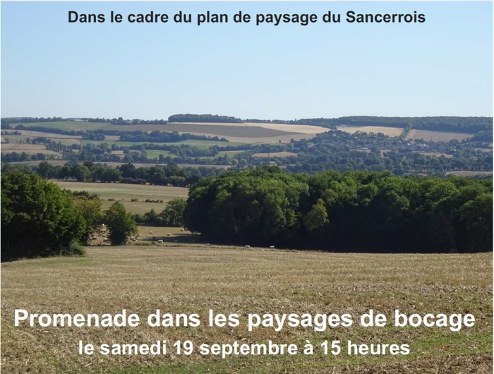 Journées du patrimoine 2020 - Promenade dans les paysages de bocage