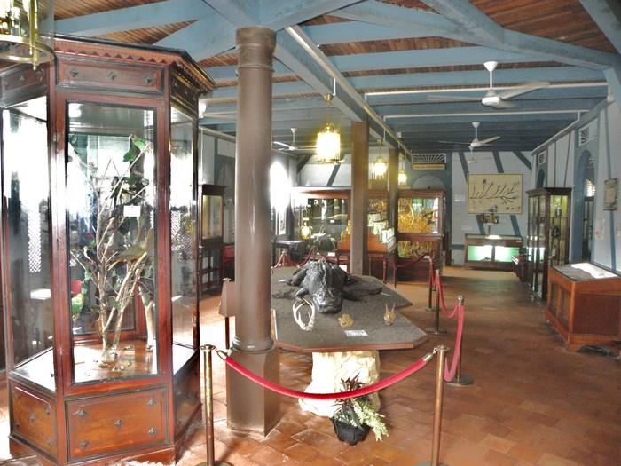 Journées du patrimoine 2020 - Réouverture du Musée Territorial