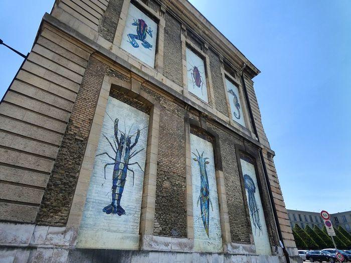 Journées du patrimoine 2020 - Visite guidée patrimoine : la place du vieux marché