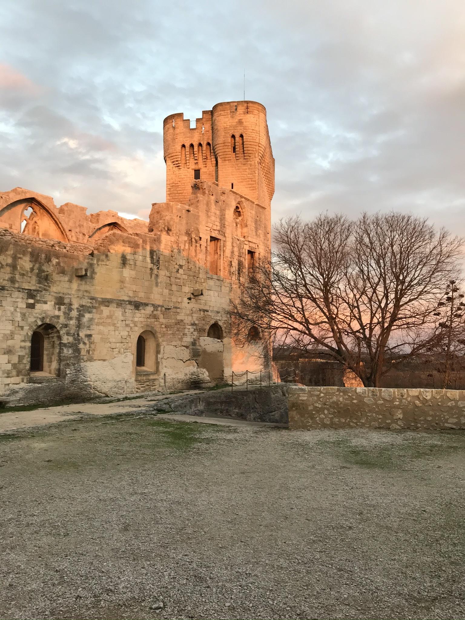 Dans le cadre du festival Arles se livre (www.arles-se-livre.fr), l'abbaye de Montmajour vous propose les 7 et 8 mars des ateliers de calligraphie.