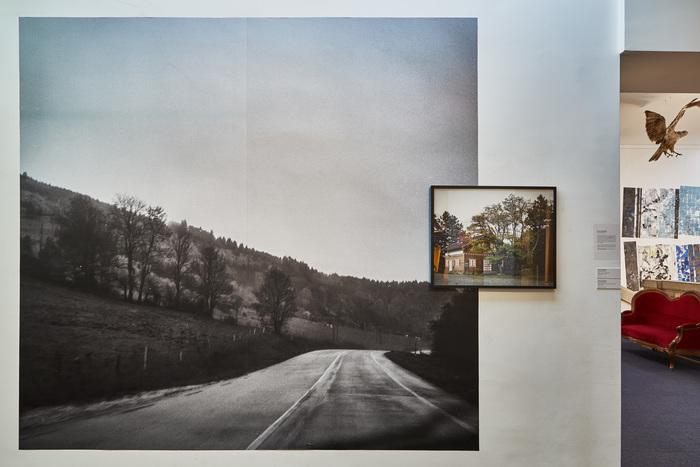 Journées du patrimoine 2020 - Visite guidée de l'exposition photographique Fins Provisoires
