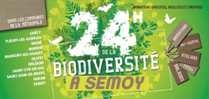 Découvrir les multiples facettes de la diversité biologique