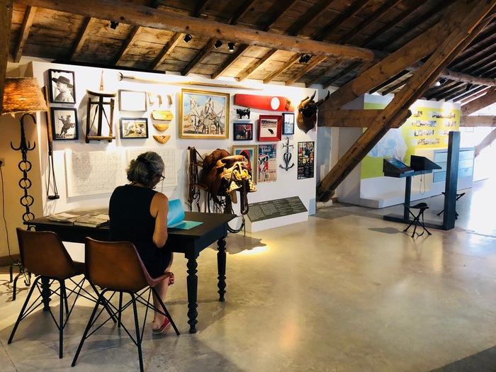 Journées du patrimoine 2020 - Annulé | (Re)découvrez le Musée de la Camargue