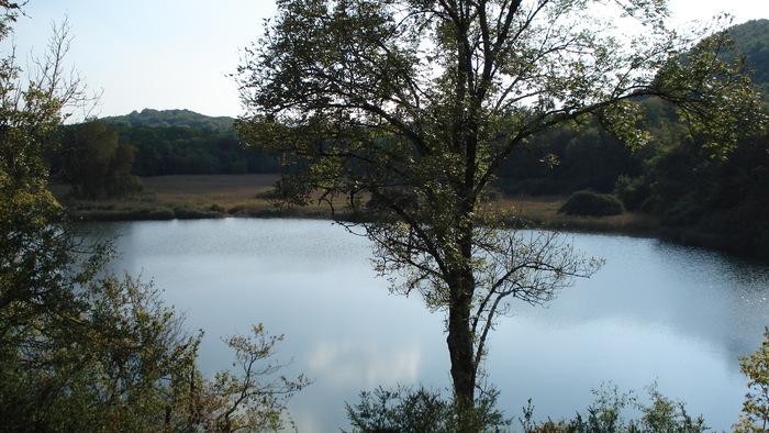 Journées du patrimoine 2020 - Annulé | Zoom sur la Tourbière du lac de Chailloux