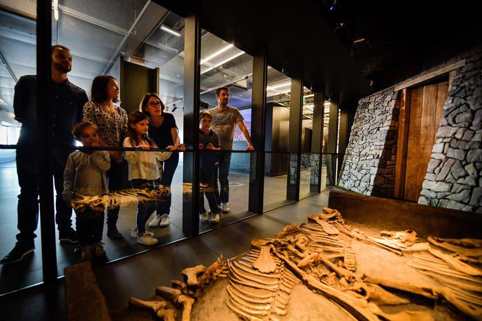 Journées du patrimoine 2020 - Ateliers d'archéozoologie en famille