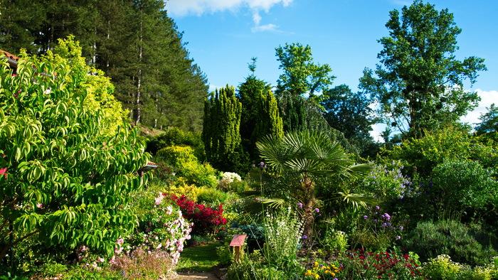 Journées du patrimoine 2020 - La Biodiversité en action aux jardins