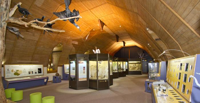 Journées du patrimoine 2020 - Visite libre des collections permanentes