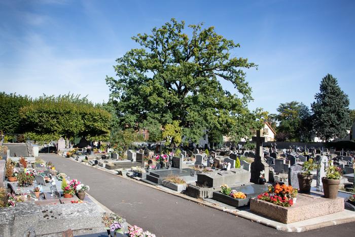 Journées du patrimoine 2019 - Présentation des artistes présents au cimetière de Fontenay-aux-Roses