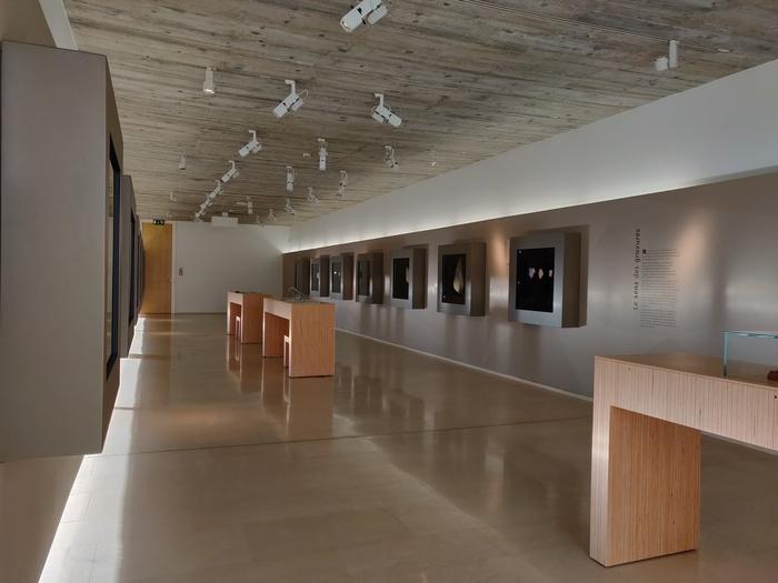 Journées du patrimoine 2019 - Découverte de l'art préhistorique du Lussacois