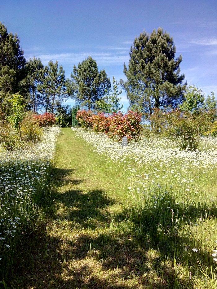 Journées du patrimoine 2020 - Découverte des Jardins
