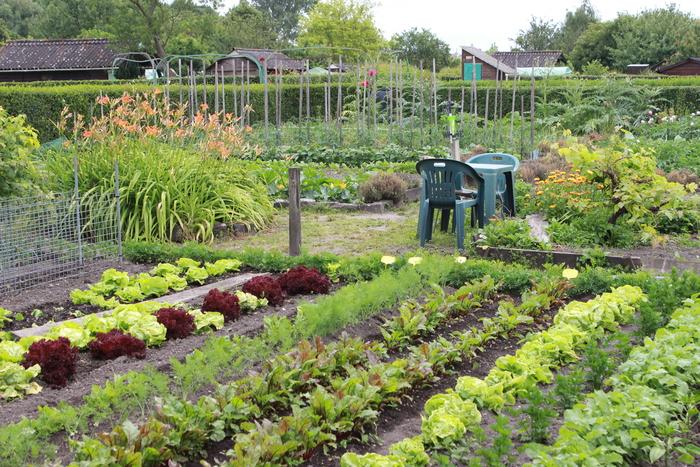 Journées du patrimoine 2020 - Découverte d'un centre de jardins éco-responsable à Longueau