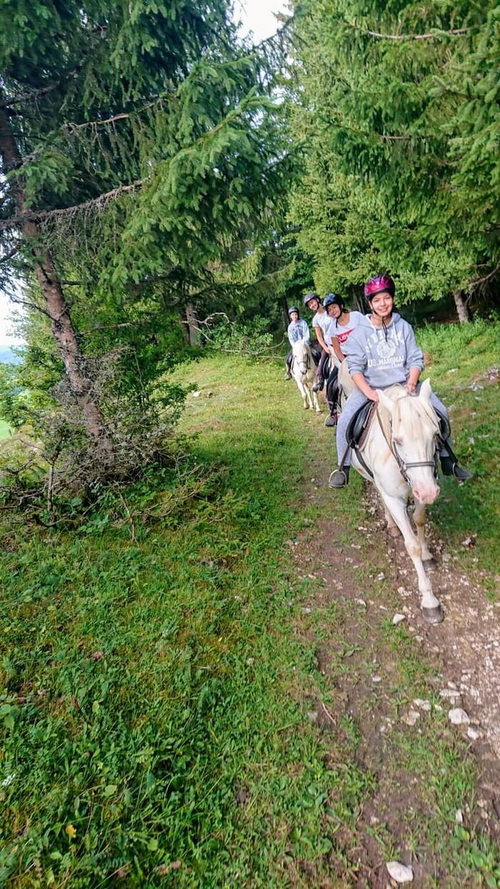 En pleine nature, pars à l'aventure dans les montagnes du Jura, accompagné d'animaux (chiens polaires, ânes et chevaux), pour y découvrir ses secrets.