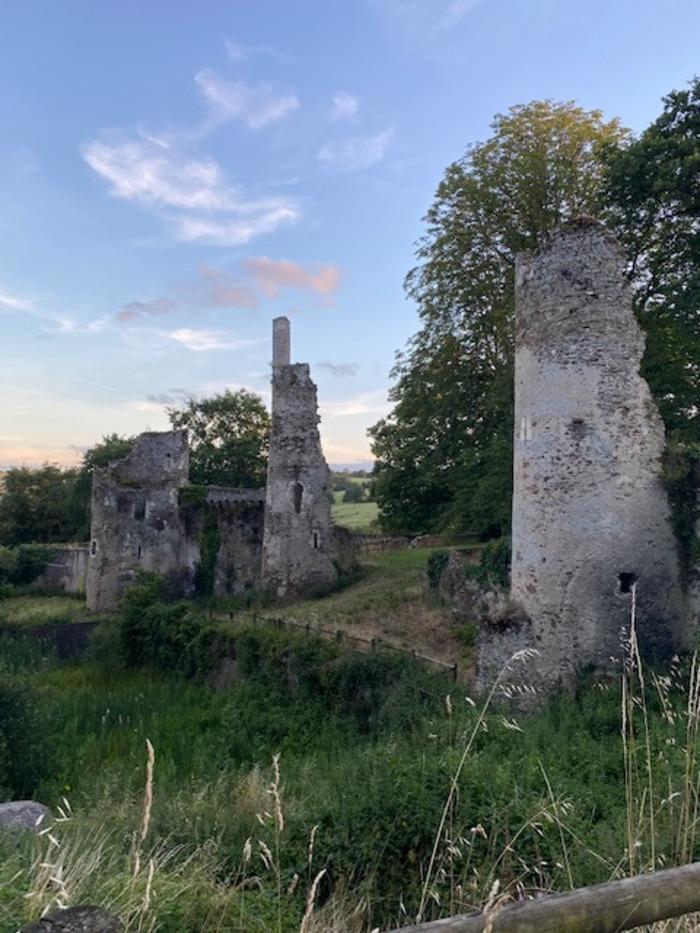 Journées du patrimoine 2020 - Visite guidée des ruines de la Turmelière, château natal du poète Joachim Du Bellay par les bénévoles des Amis du Petit Lyré